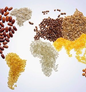 world-food-day_istock-ftr-1024x640